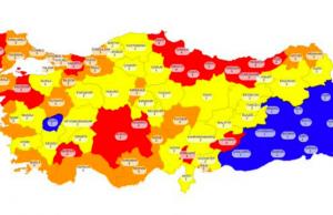 Koronavirüsün Türkiye Mutantı Olabilir!